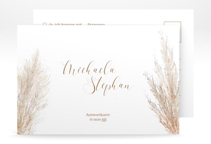 "Antwortkarte ""Pampasgras"" A6 Postkarte weiss"