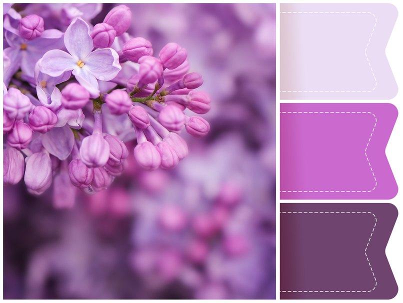 Lila Flieder inspiriert zu diesem wundervollen Farbkonzept