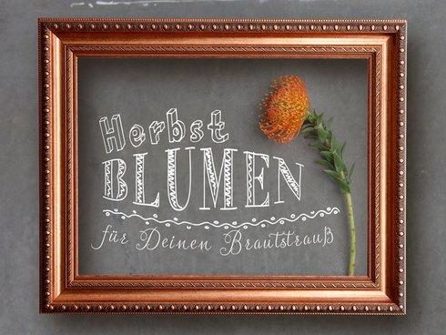 Lasst Euch in die Welt der Herbstblumen entführen und findet heraus, welche sich für Euren Brautstrauß eignen
