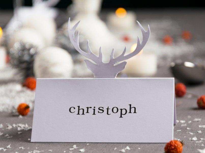 Die Tischdeko Im Winter Tischkarten Selber Basteln Myprintcard