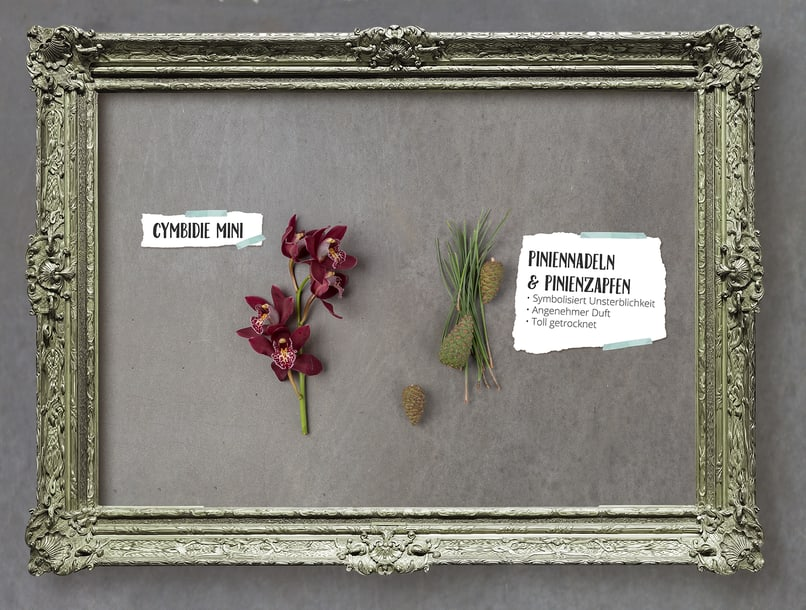 Interessante Kombination - Pininenzapfen und Mini-Orchideen